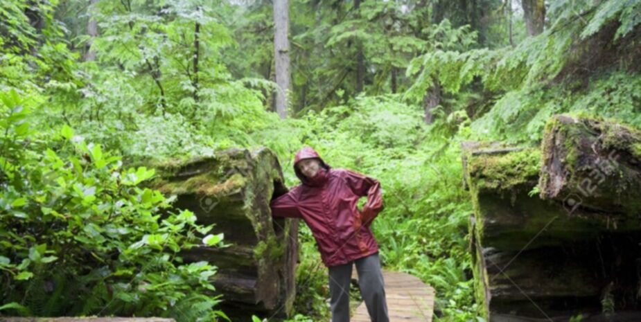 Tours near Shady Shores Beach Resort located near Qualicum Beach on Vancouver Island BC