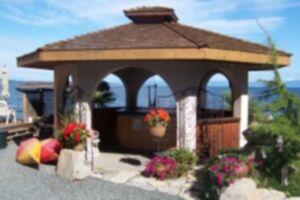 Shady Shores Beach Resort Grounds